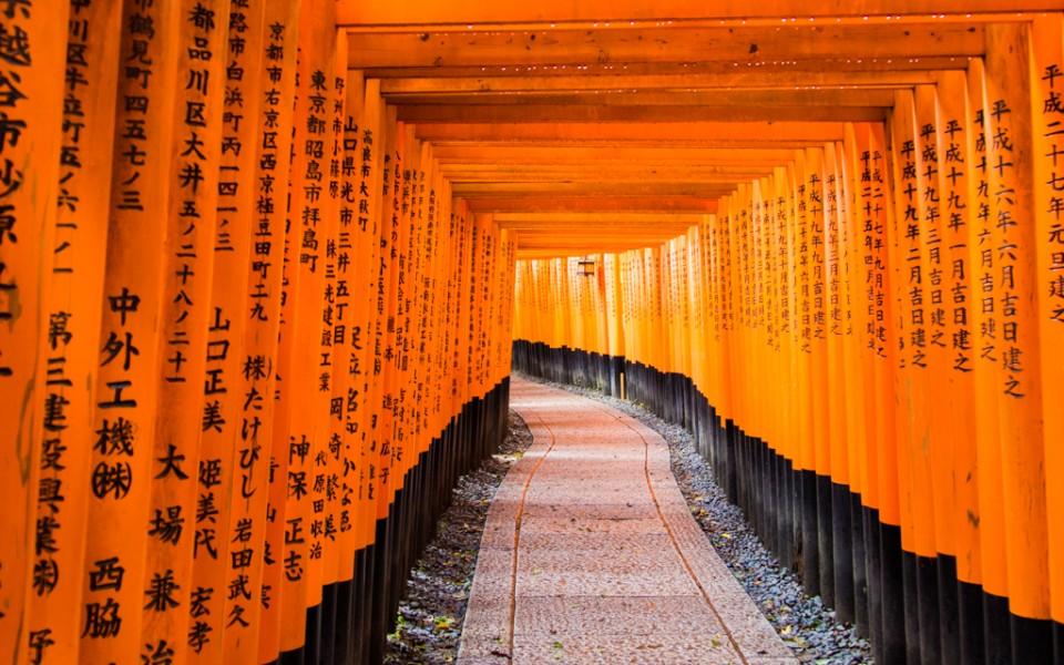 A people-free shot of the torii gates at Fushimi Inari Taisha