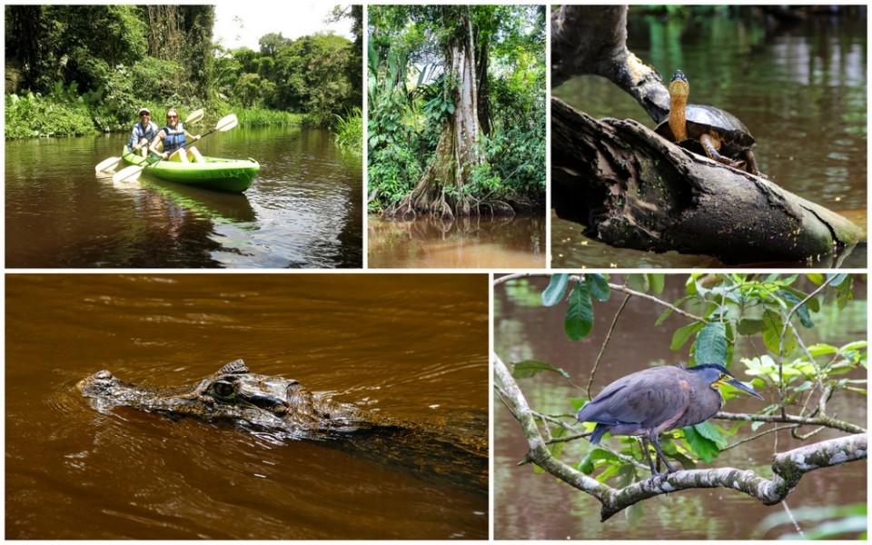 River Kayak - Tortuguero - HoneyTrek.com
