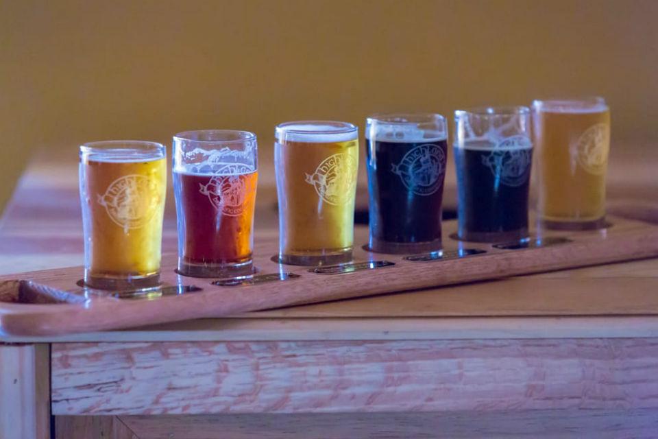 Flight of Seasonal Brews at Highland Brewing Company, Asheville, NC