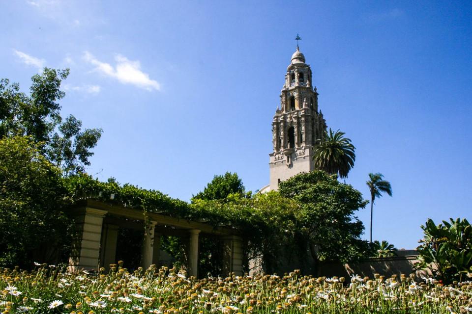 Photo by Cacinda Maloney - Balboa Park, San Diego